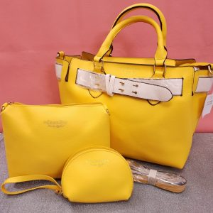 Burberry Handbag Set